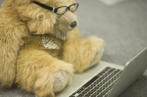 Tan teddy bear in hipster glasses staring at a laptop.